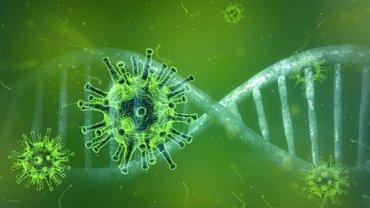 Ein COVID-19-DNA-Strang